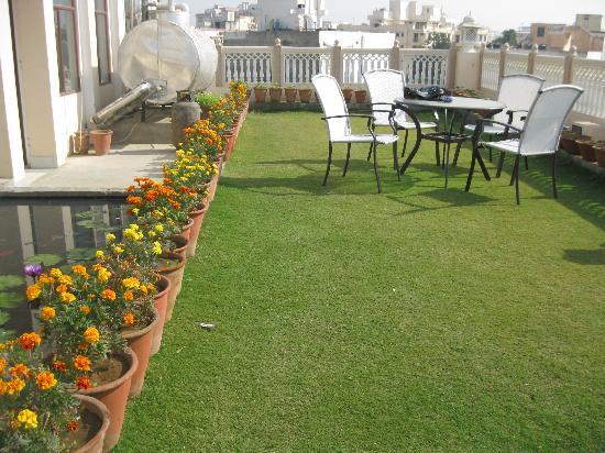Om Niwas: roof top garden