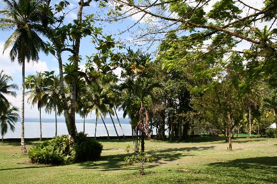 Saladero Eco Lodge : On the property