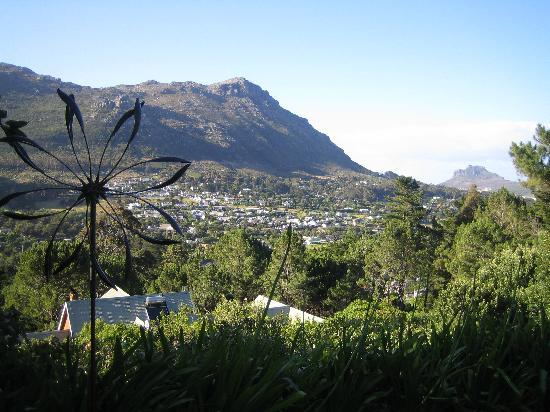 The Tarragon: scenic view