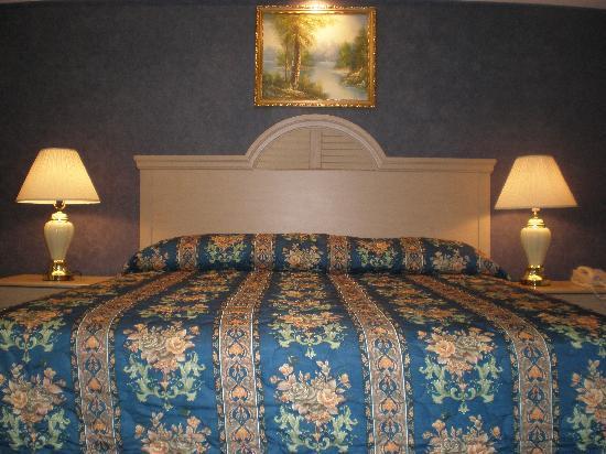 Red Carpet Inn & Suites Smithville : Dulex King Size Room