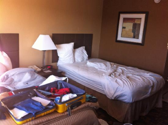 Quality Inn and Suites Denver Stapleton: One of 2 beds