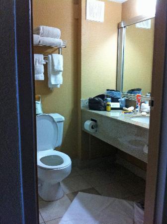 Quality Inn & Suites Denver Stapleton: Bathroom