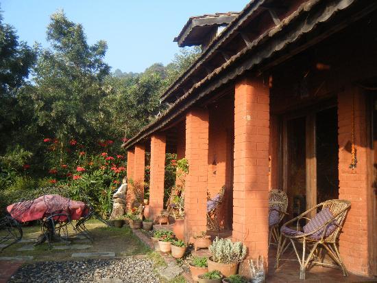 Shivapuri Heights Cottages: terrace, december morning light