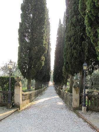 Villa Pasquini: Spectacular driveway