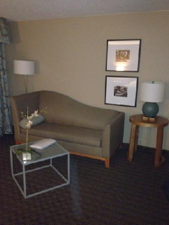 Hampton Inn & Suites St. Louis at Forest Park: king suite