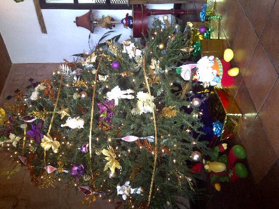 Hotel EuroMaya Suites: Nuestro Arbol de Navidad