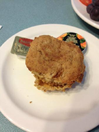 Apricot Tree : Apricot muffin