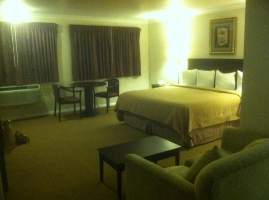 Quality Inn Thousand Oaks: king room