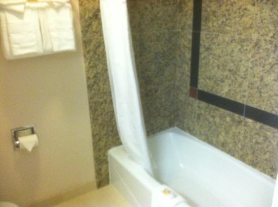 Quality Inn Thousand Oaks: bathroom
