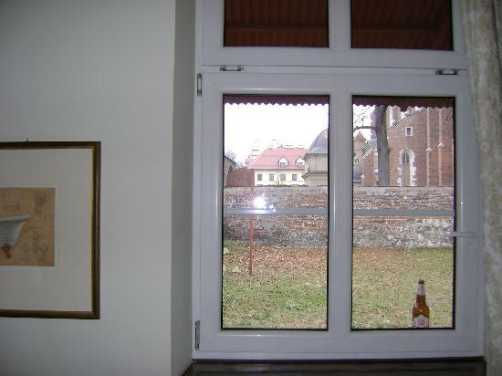Aparthotel Miodosytnia: Viste desde la habitacion