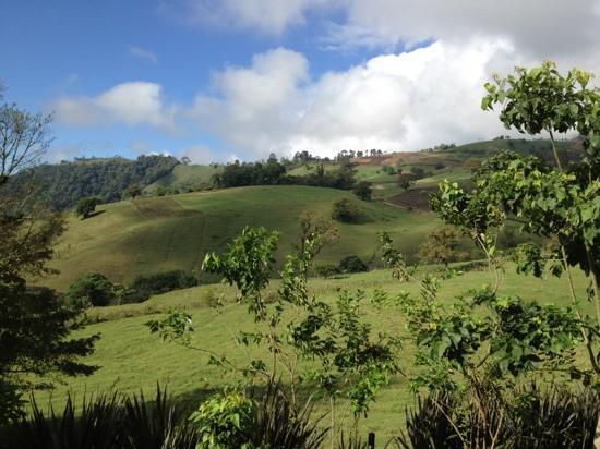 Hotel Guayabo Lodge : amazing views of the countryside