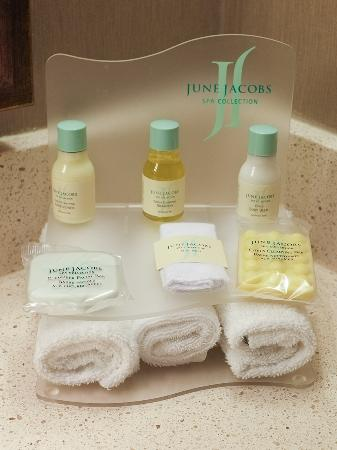Pacific Gateway Hotel at Vancouver Airport: Bathroom amenities