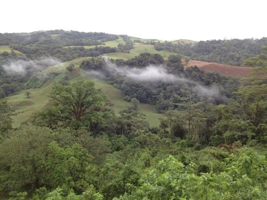 Hotel Guayabo Lodge: our view from cabin #44