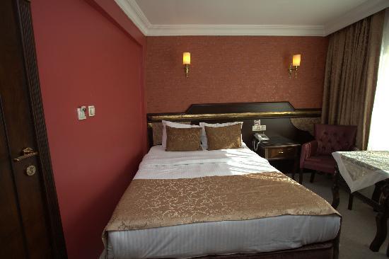 Sultanahmet Park Hotel: SİNGLEW ROOM