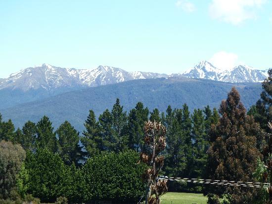 Blue Thistle Cottages: View