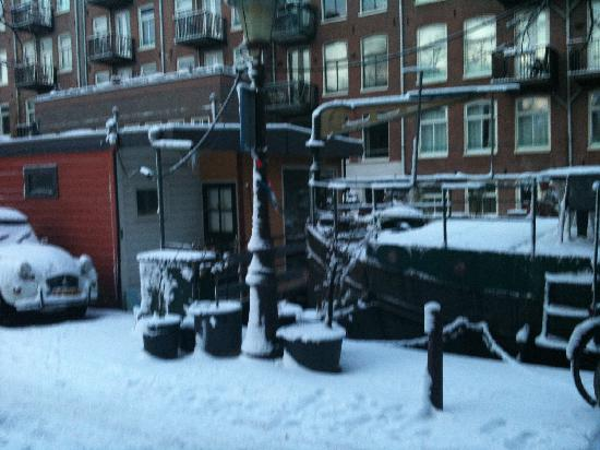 Ark16: Winter