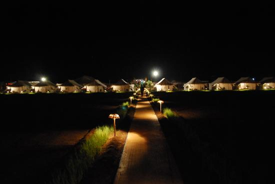 Mango Safari Camp: An Evening @ the resort