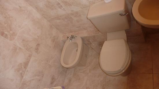 Duxford Lodge: Nice tiles