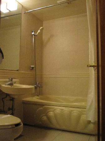 Hotel Angel: ちょっと暗いけど、広めのお風呂とトイレ