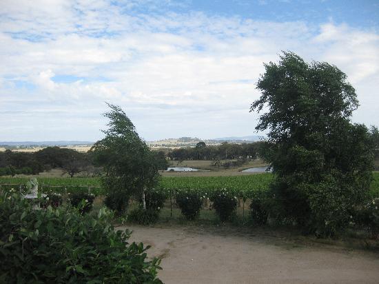 Kyneton Ridge Estate B&B: A sample of the landscape, from the house.