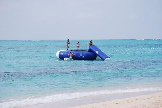 Cornwall Beach: Fun in the sea!!!!