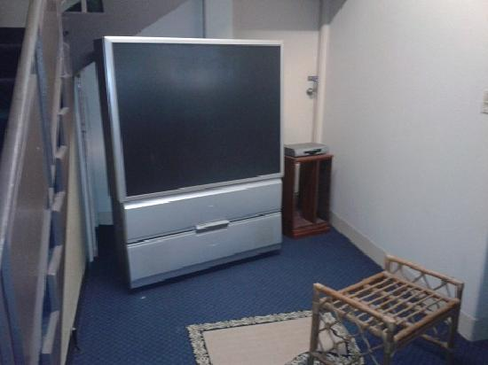 Wiley Park Hotel: ummm.....the tv?