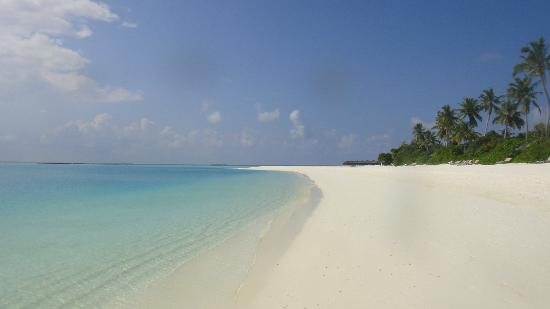 The Sun Siyam Iru Fushi Maldives: playa