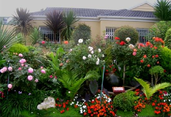 Cape Town Seamore Express Tours and Guesthouse: Garden