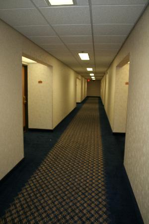 Comfort Inn Birch Run: Third Floor Hallway