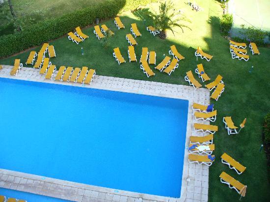 Luna Olympus: Nice size pool.