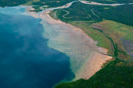 Parque Nacional y Reserva Katmai, AK: Caribbean?