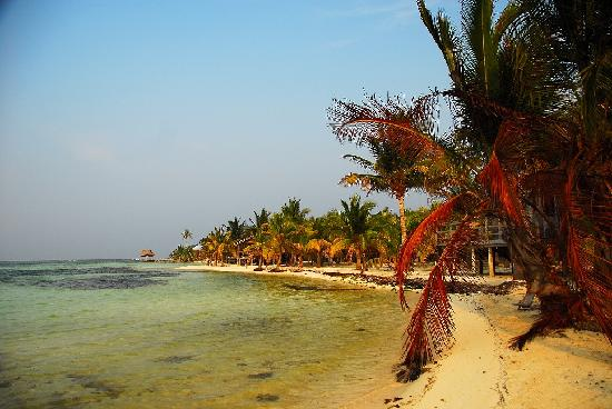Isla Marisol Resort : Bone fish school directly in front of the resort