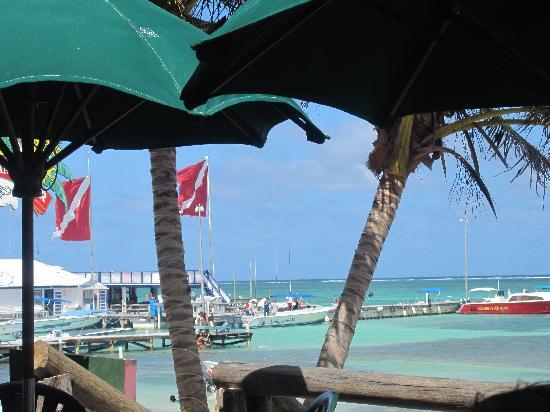 Fido's Restaurant & Bar | A Tease of Belize  |Fidos San Pedro Belize