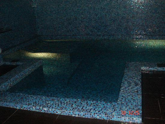 Gallery Park Hotel & Spa : swimming pool