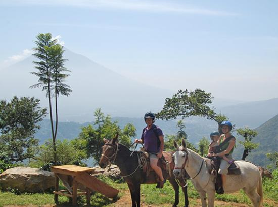 Filadelfia Coffee Resort and Tours: Mule Ride - Horseback Riding