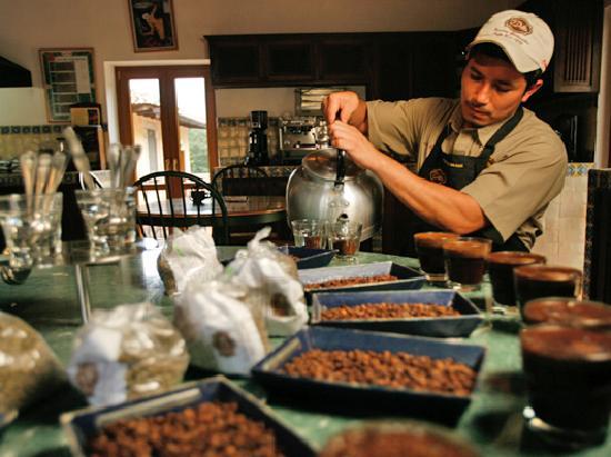 필라델피아 커피 리조트 & 투어 사진
