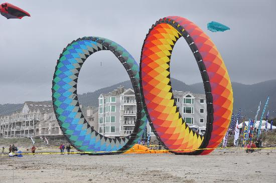 Garibaldi House Inn & Suites: crazy big kites on a nearby beach