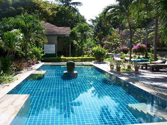 Arayaburi Boutique Resort: piscine / jacuzzi