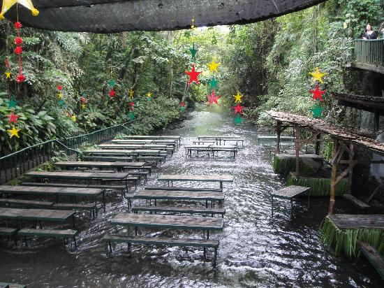 Villa Escudero Tiaong 2018 All You Need To Know Before