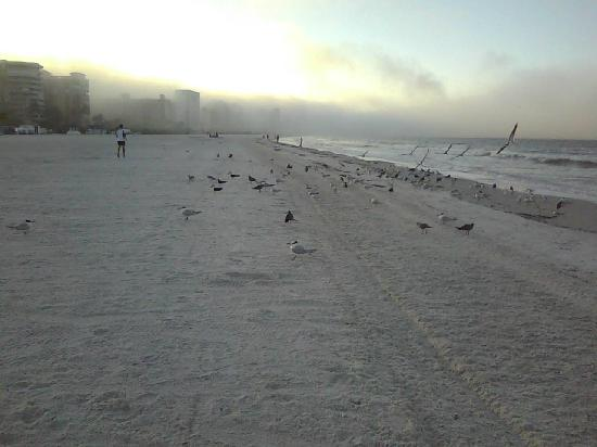 South Marco Beach : morning fog