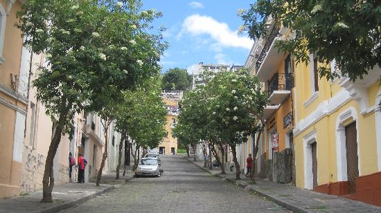 La Guayunga Hostel Quito: Street with hostel on the left (where the people are)