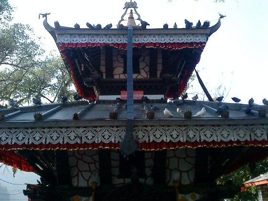 Barahi Tempel