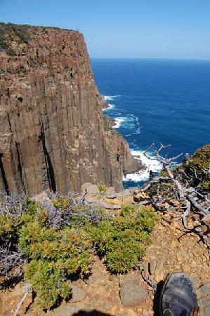 Cape Raoul : More cliffs