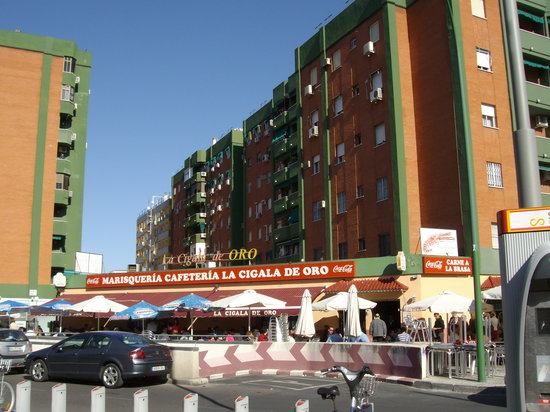 La Cigala De Oro Seville Restaurant Reviews Photos