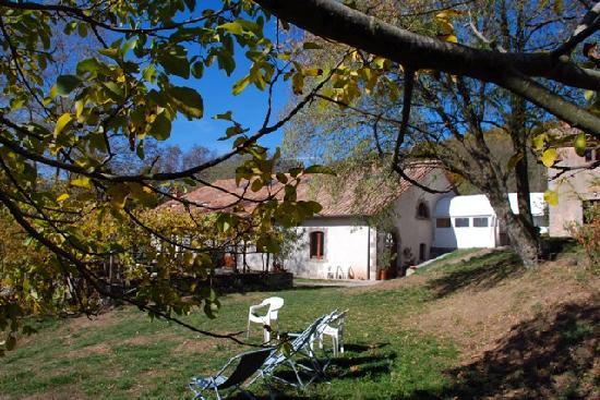 Agriturismo Il Cornacchino: Il nostro giardino
