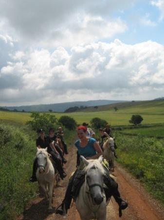 Agriturismo Il Cornacchino: Viaggi a cavallo