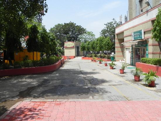 Ginger New Delhi: Medicine Store