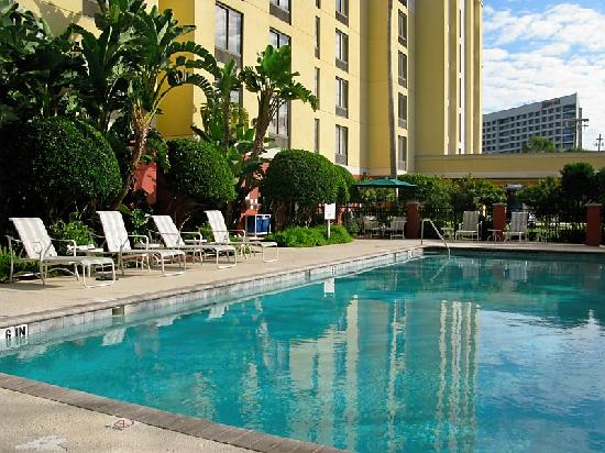 SpringHill Suites by Marriott Tampa Westshore Airport: Pool with Marriott Westshore across the street.