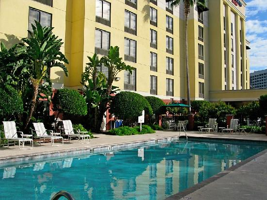 SpringHill Suites by Marriott Tampa Westshore Airport: Pool