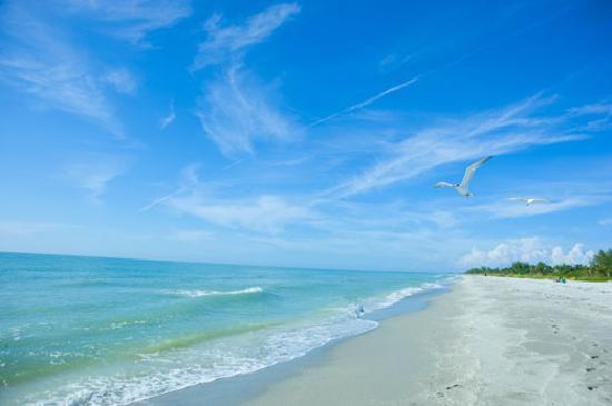 Pulau Captiva, FL: Captiva Island Beach